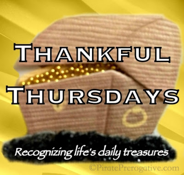 Recognizing life's daily treasures in this weekly gratitude series.