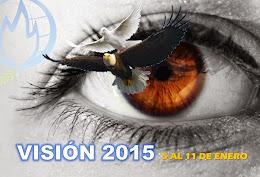 VISIÓN 2015