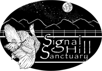 Please Help Signal Hill Sanctuary