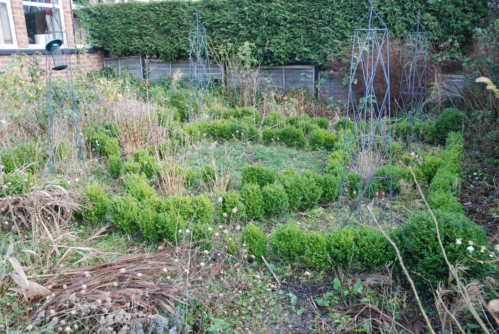 the blackberry garden january 2012