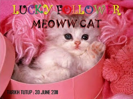 Lucky Follower Meoww Cat