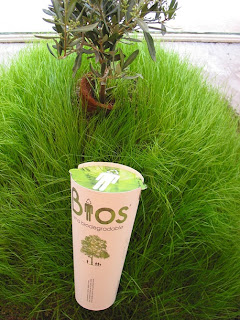 Bios Urna Biodegradable