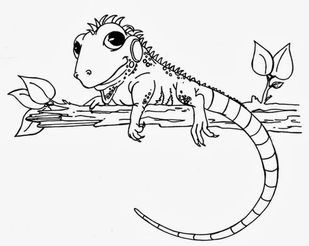 La Chachipedia: Dibujos de camaleones para colorear, para imprimir y ...