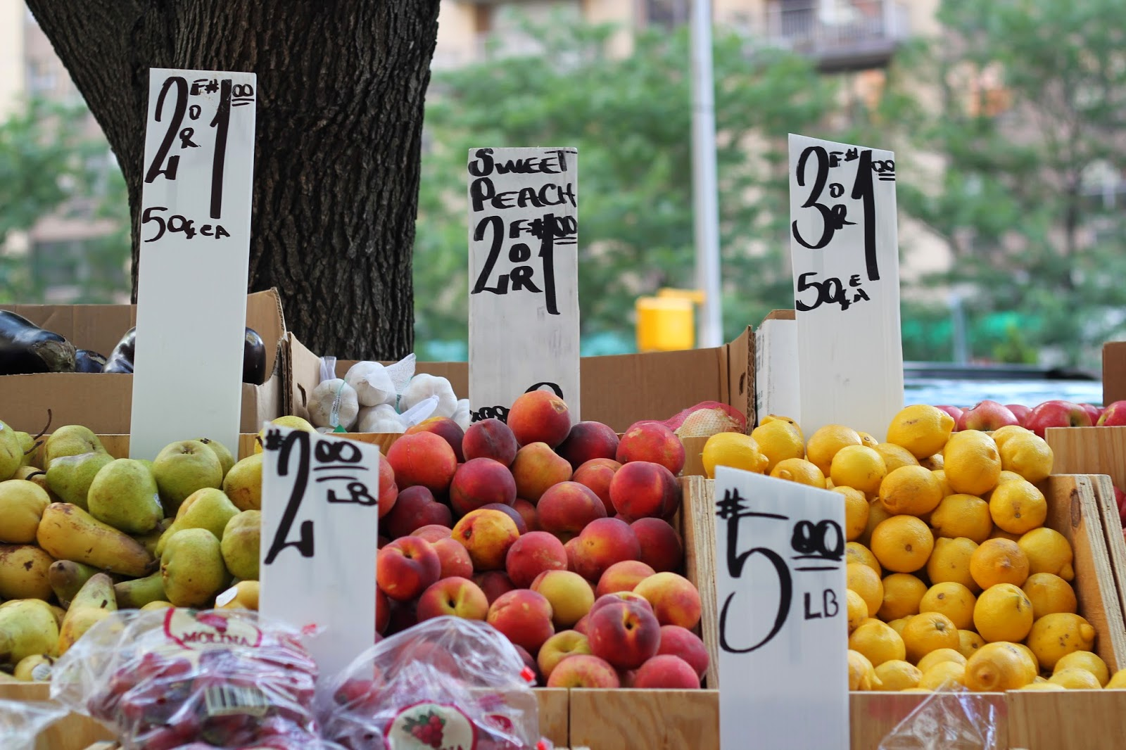 New York, Street Fruit Stand