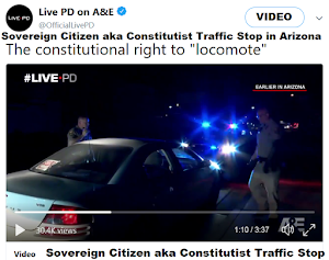 VIDEO: Sovereign Citizen aka CONSTITUTIONALIST  Threat to Law Enforcement during Traffic Stop