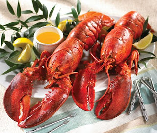 Live Maine Lobsters Free Shipping!!! A good News for Lobster Lovers Lobster For Sale