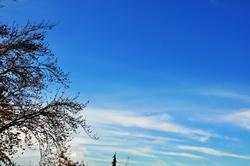 Wunderschönes Blau...