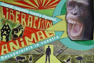 Listado de marcas que no testean en animales