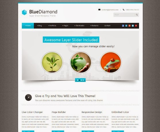 BlueDiamond - Responsive Corporate WordPress Theme