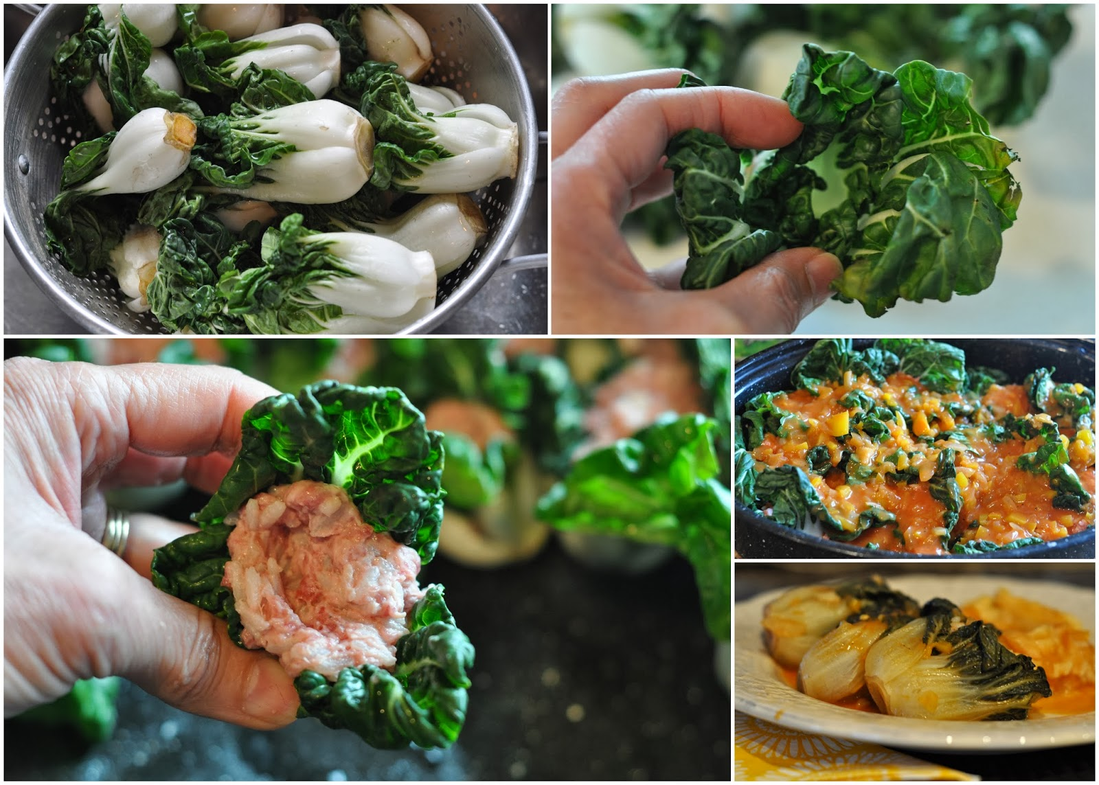 Mennonite Girls Can Cook: Stuffed Baby Bok Choy
