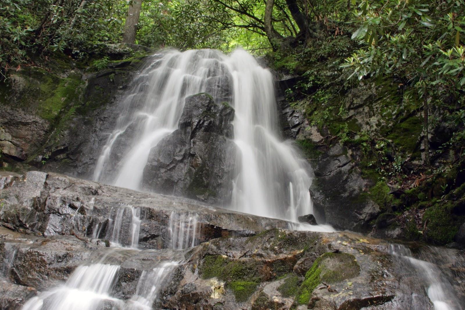 Qu quieres que te cante agua viva de la fuente for Fuentes de agua
