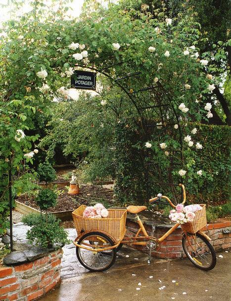 Depósito Santa Mariah~ Ideias Para Jardins Simples