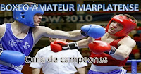 Boxeo Amateur Marplatense