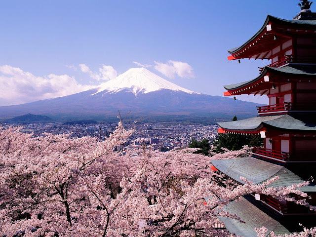 Vé máy bay đi Tokyo giá rẻ 2015_3