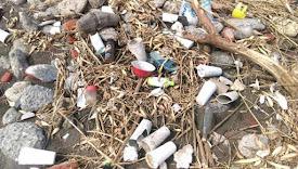 2016海廢數據:寶特瓶離島榜首 島內回收系統建立有效