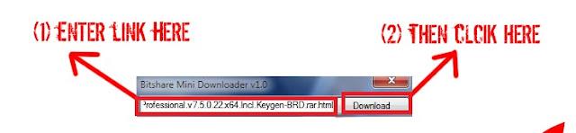 Bitshare Premium Link Generator - 2013