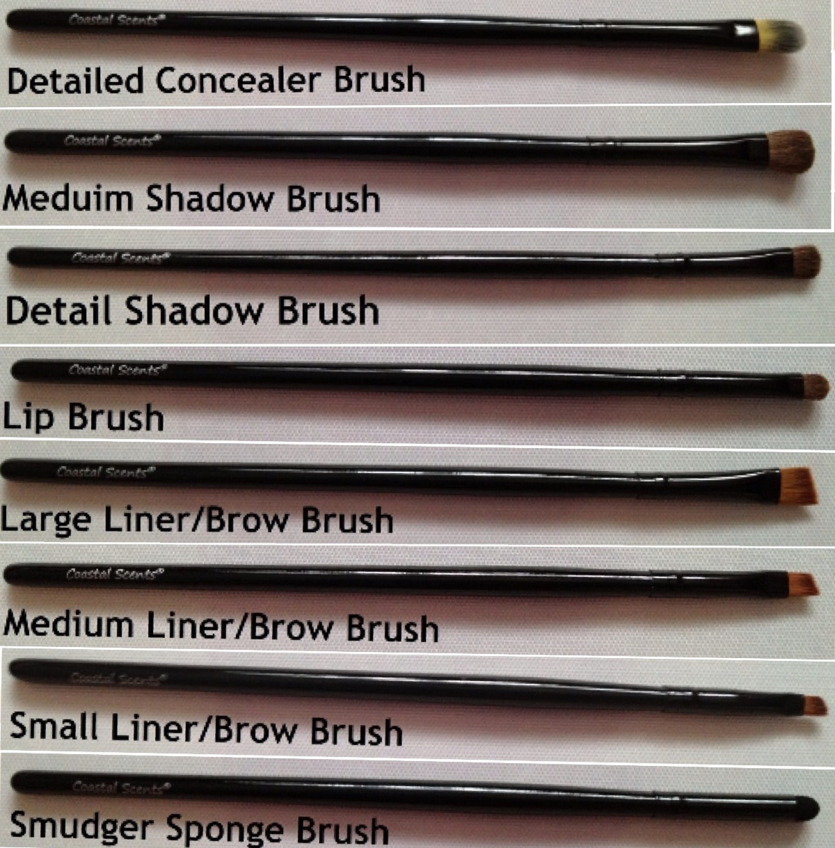 coastal scents brushes uses. foundation brush: i haven\u0027t used this yet as don\u0027t really use brushes my real techniques stippling brush gives me such an coastal scents uses