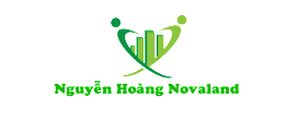 Nguyễn Hoàng Novaland
