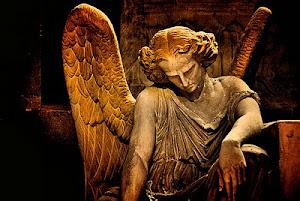 PORTAL ANGELS
