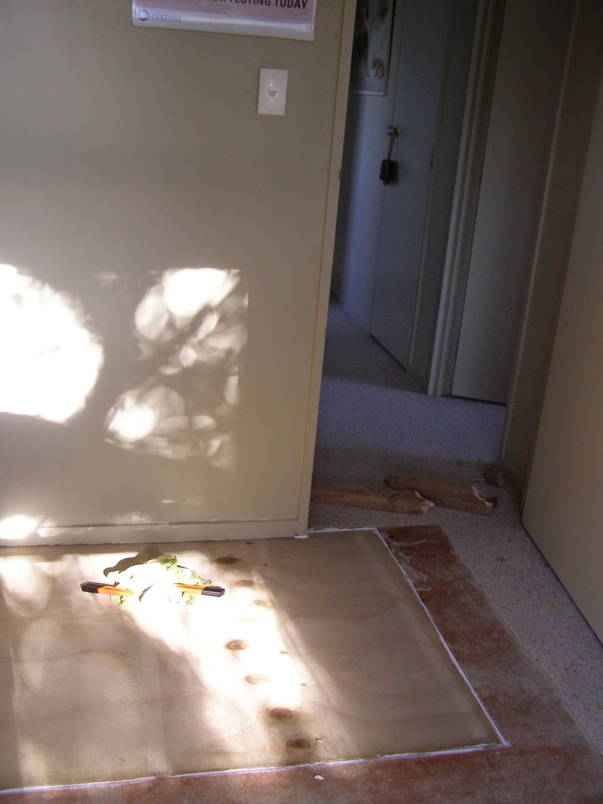 Marine Plywood Bathroom Floor : The thrifty fox progress in nursery