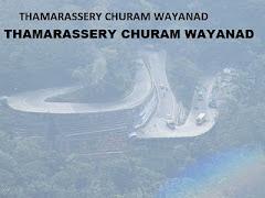 THAMARASSERY CHURAM WAYANAD