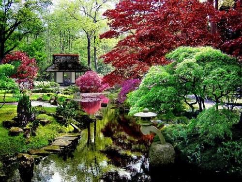 Ser jap n es mas jardines japoneses for Jardines japoneses en miniatura