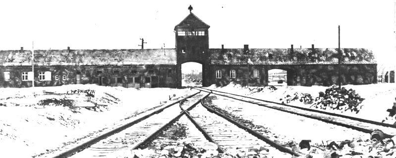 L'Olocausto visto dai polacchi
