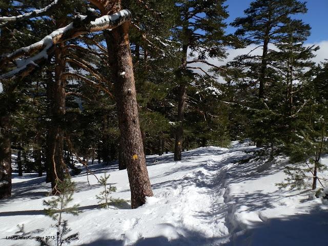 Camino Schmid invernal
