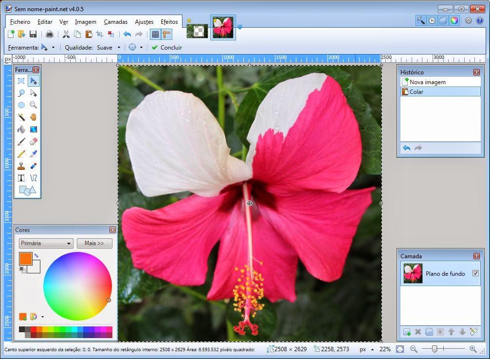 Paint NET colar selecção_Crtl+V