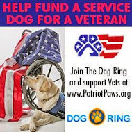 Help Fund a Service Dog For a Veteran!