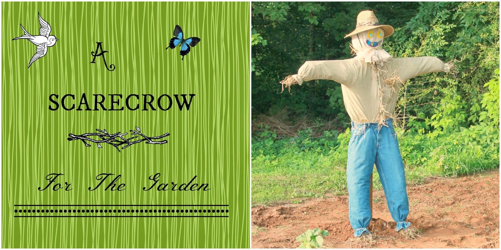 the little farm diary: A Scarecrow For The Garden