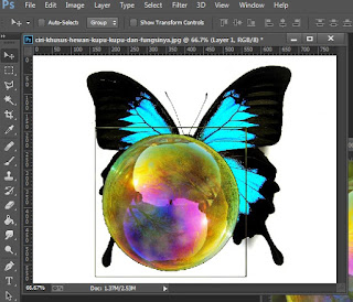 Manipulasi easy photoshop tutorials edit gambar photoshop kupu kupu cantik