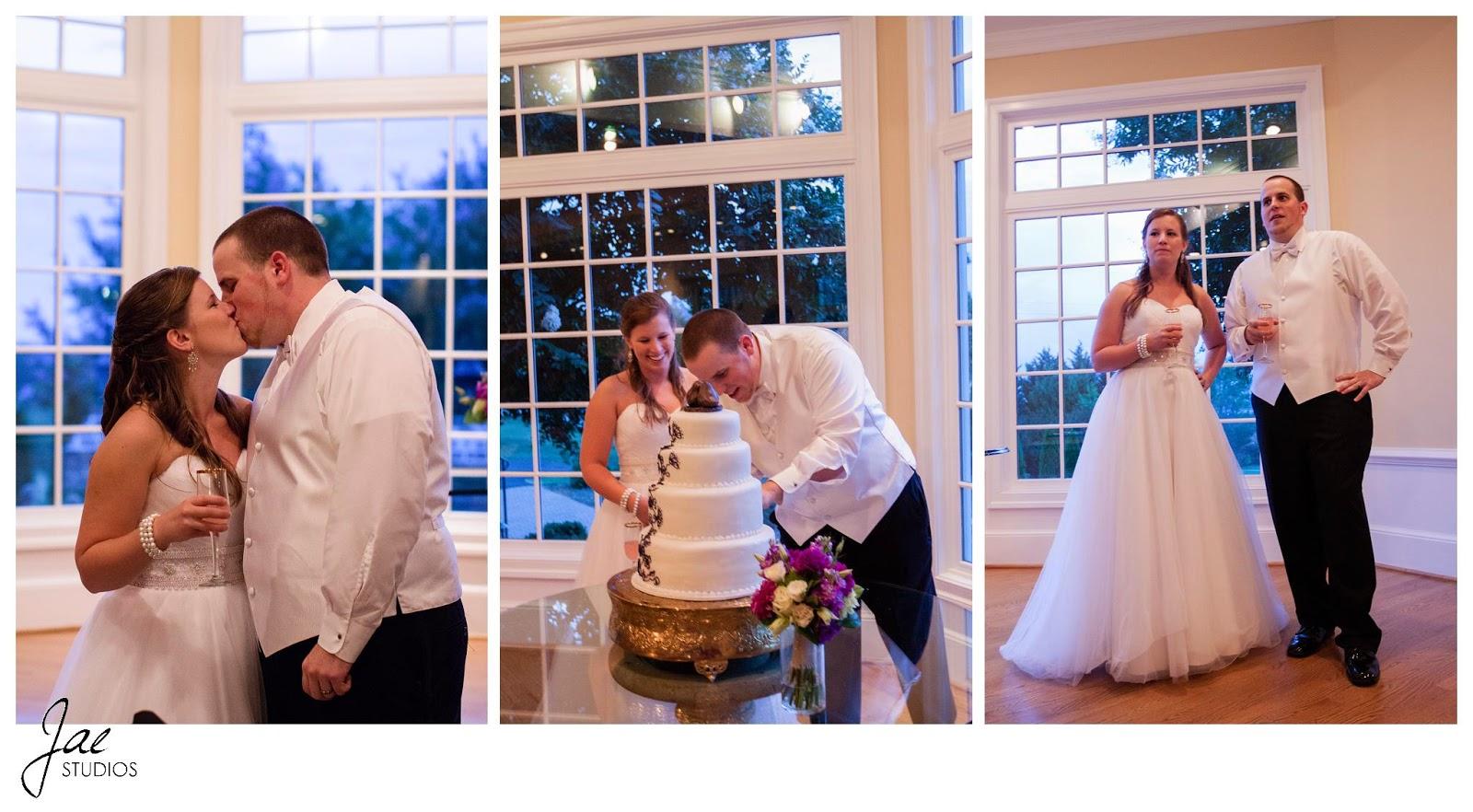 Jonathan and Julie, Bird cage, West Manor Estate, Wedding, Lynchburg, Virginia, Jae Studios, cake, purple, kiss, wedding dress, tuxedo, bride, groom, window, drink, cutting the cake