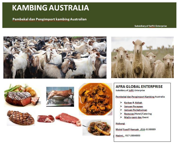 Pembekal dan Pengimport Kambing Australia