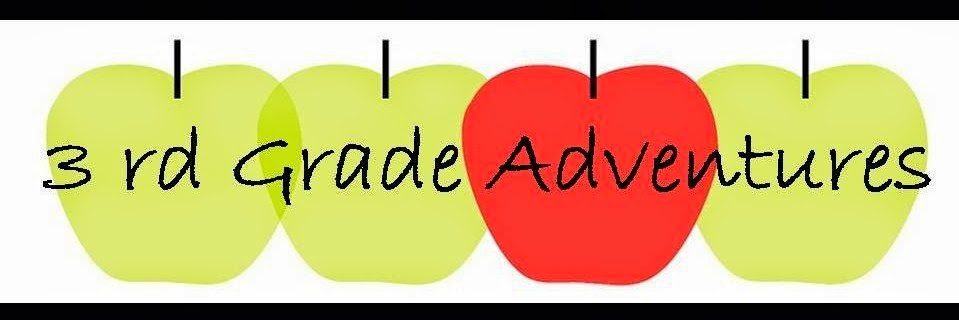 3rd grade adventures