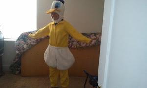 Duck Tales!