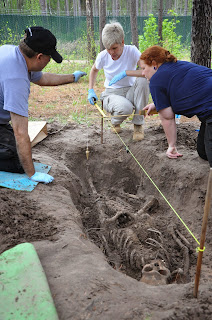 Dr. Joan Bytheway teaches forensic anthropology at STAFS.