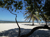 Kenia II - Küste