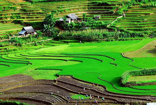 Sơn La,Tour Hà Nội - Sơn La - Diện Biên - Lai Châu - Sapa (5 ngày)