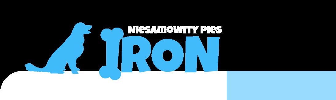 Iron-niesamowity pies