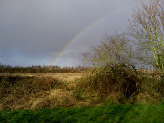 Geocaching rainbow over Fazeley