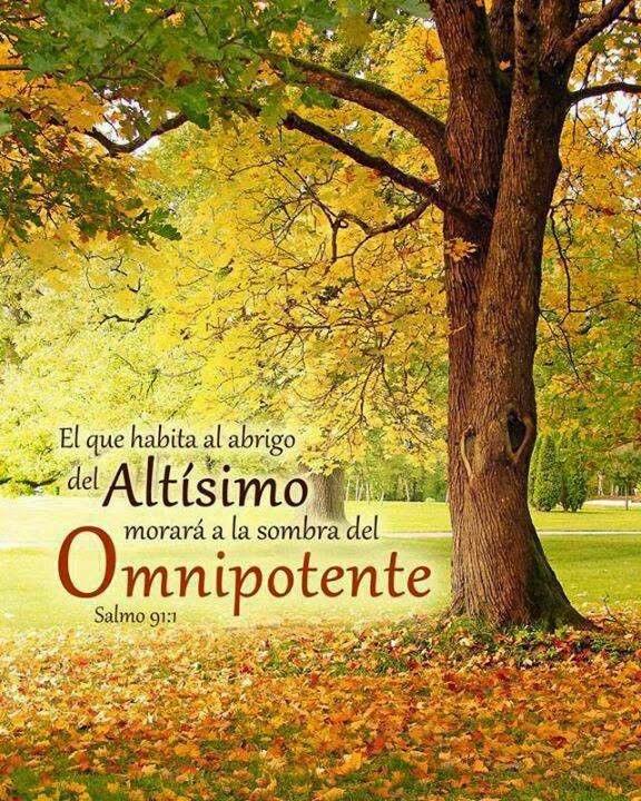 Amado Oração do Salmo 91 - ÁGUIAS DE ORAÇÃO VH99