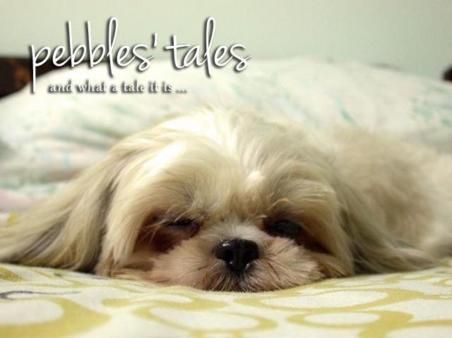 Pebbles' Tales