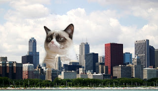 Grumpy Cat Sears Tower Chicago