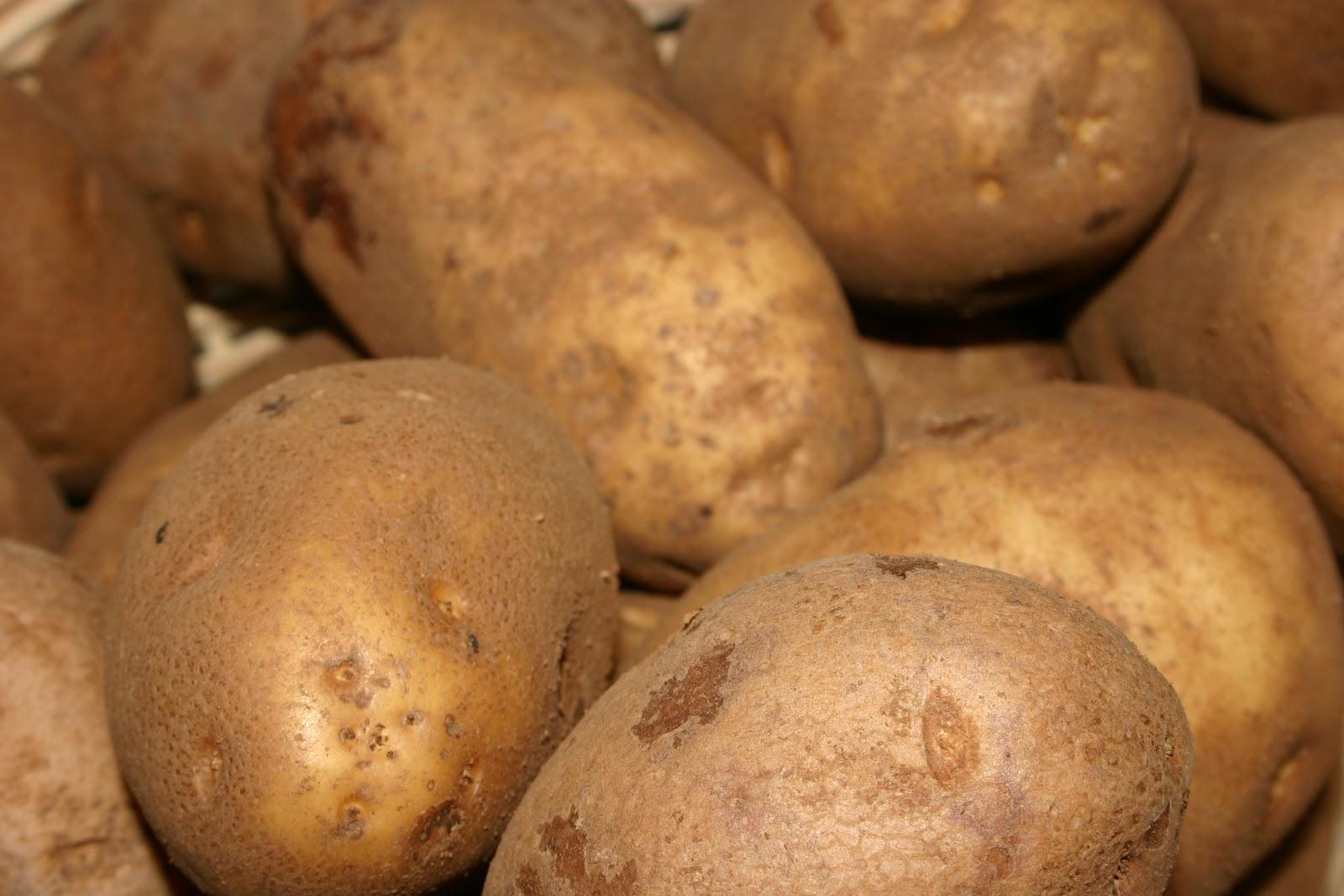 how to make mashed irish potatoes