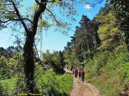 "Camí de l'ermita de Sant Roc. Autor: Francesc ""Caminaire"""