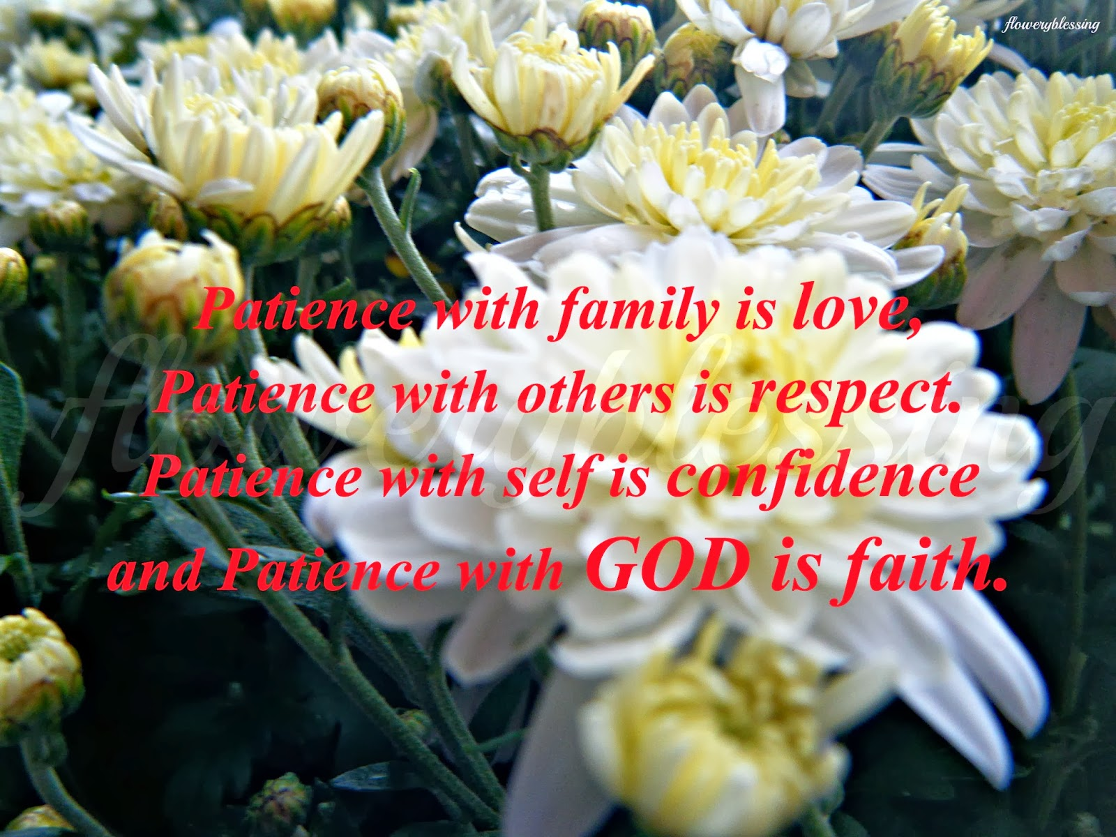 essay on patience with others is respect