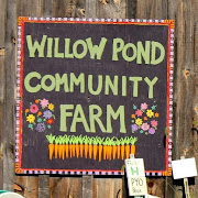Willow Pond Community Farm here at ART ON UNION
