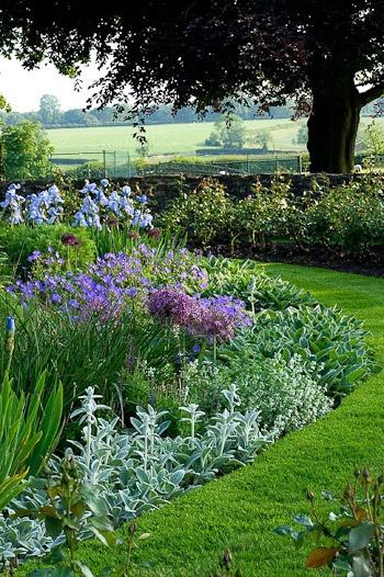Jard n y terrazas plantas de jard n dise o y decoraci n for Diseno y decoracion de jardines