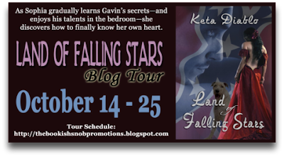 Land of Falling Stars Blog Tour: Book Excerpt + Giveaway